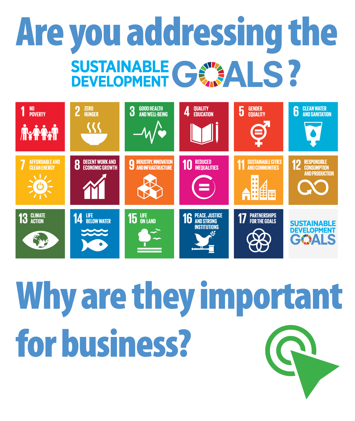 How are you addressing the sustainable development goals sdgs